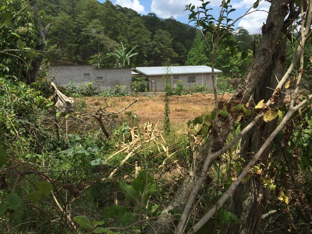 Foto Terreno en Venta en  El Zarsal,  Valle de Angeles  Terreno Residencial en El Zarzal, Valle de Angeles