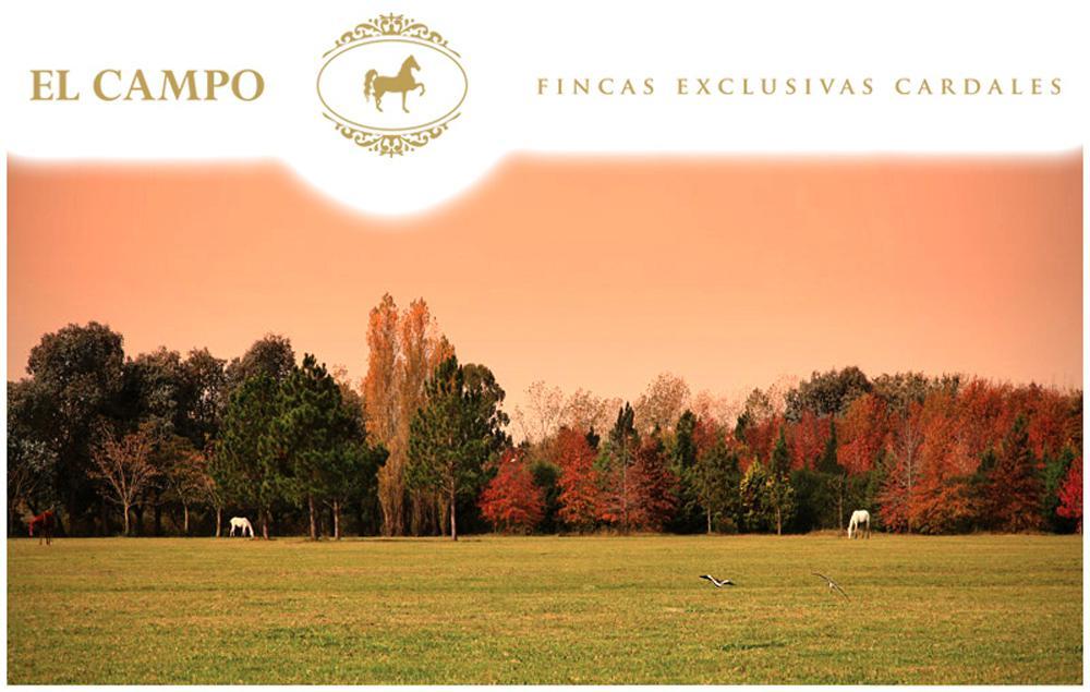 Terreno en Venta en El Campo - Fincas Exclusivas Cardales - Lote Bosque Central