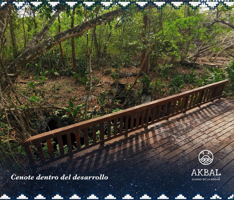 Foto Terreno en Venta en  Temozón ,  Yucatán  LOTES URBANIZADOS- CENOTE DENTRO DEL DESARROLLO - TEMOZÓN, YUCATÁN