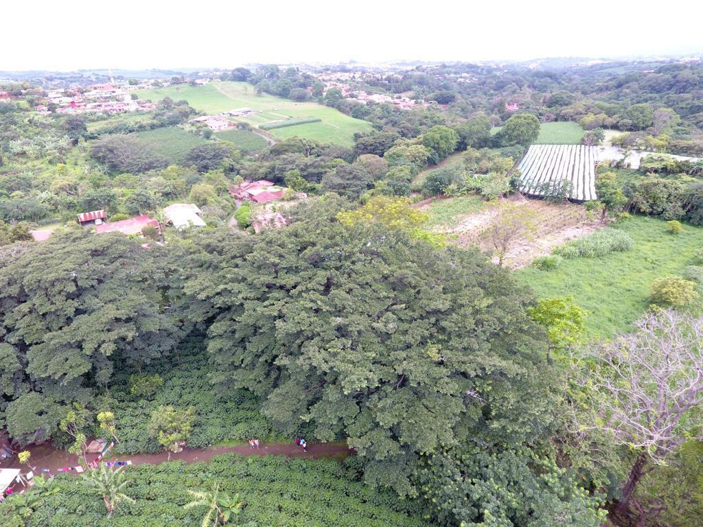 Foto Terreno en Venta en  Grecia ,  Alajuela  Grecia/ Uso de Suelo Media Densidad/ Oportunidad