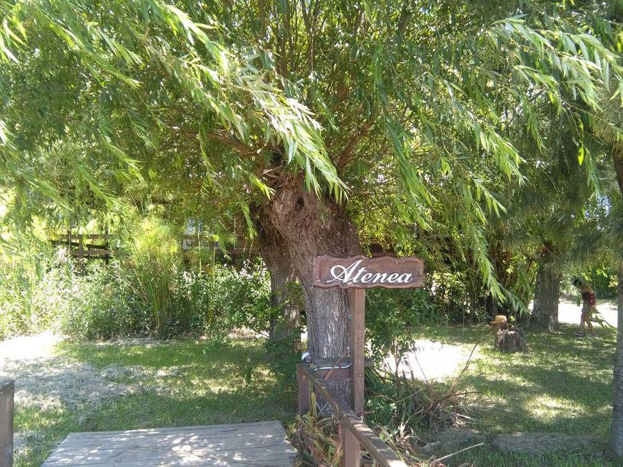 Foto Casa en Venta en  Paraná Miní,  Zona Delta San Fernando   Paraná Miní
