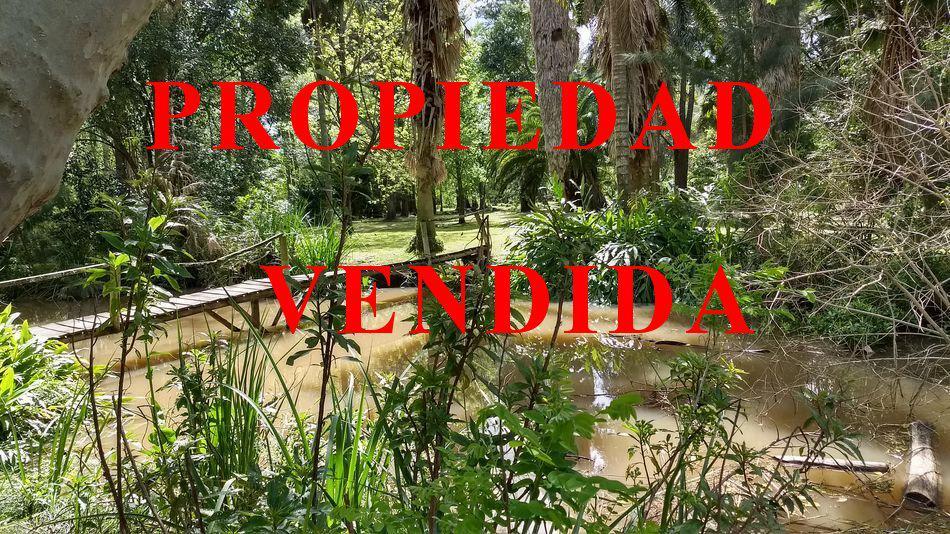 Foto Terreno en Venta en  Sabalos,  Zona Delta Tigre  Sábalos Lote Grande