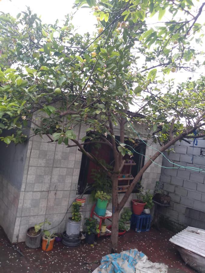 Foto Casa en Alquiler en  B.Loma Grande,  Parque San Martin  Strauss al 300
