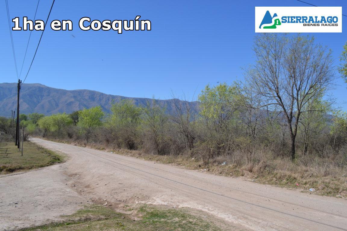 Foto Terreno en Venta en  Cosquin,  Punilla  Amplio lote en el Alto Mieres