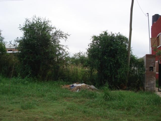 Foto Terreno en Venta en  Colon,  Colon  Penon entre Noailles y Moreno