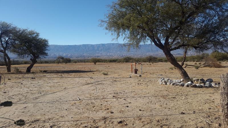 Foto Campo en Venta en  Colalao Del Valle,  Tafi Del Valle  Ruta 40