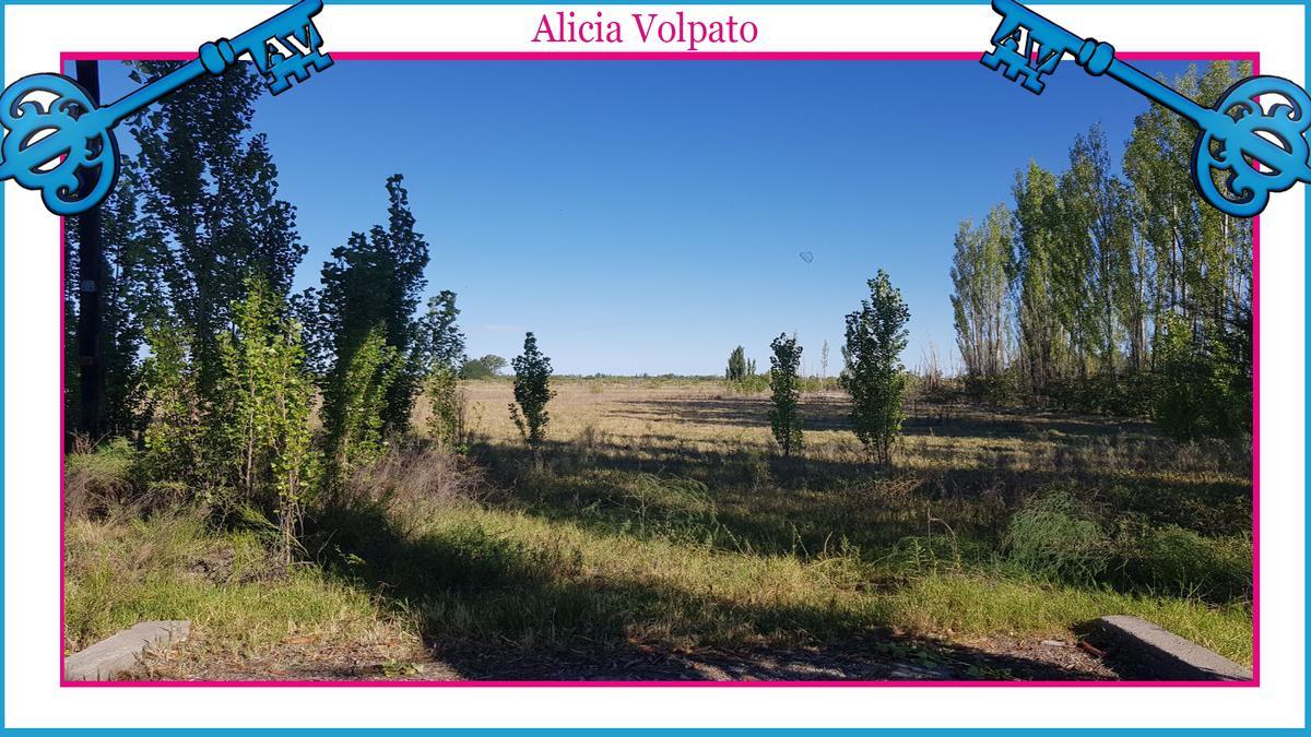Foto Terreno en Venta en  San Rafael ,  Mendoza  RUTA NACIONAL 146