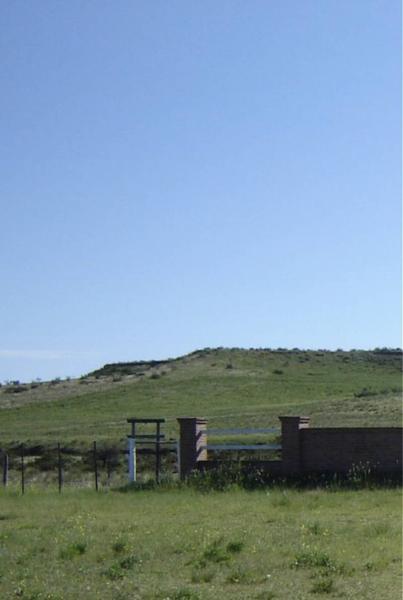 Foto Campo en Venta |  en  Puan,  Puan  Ruta 35 al 1000