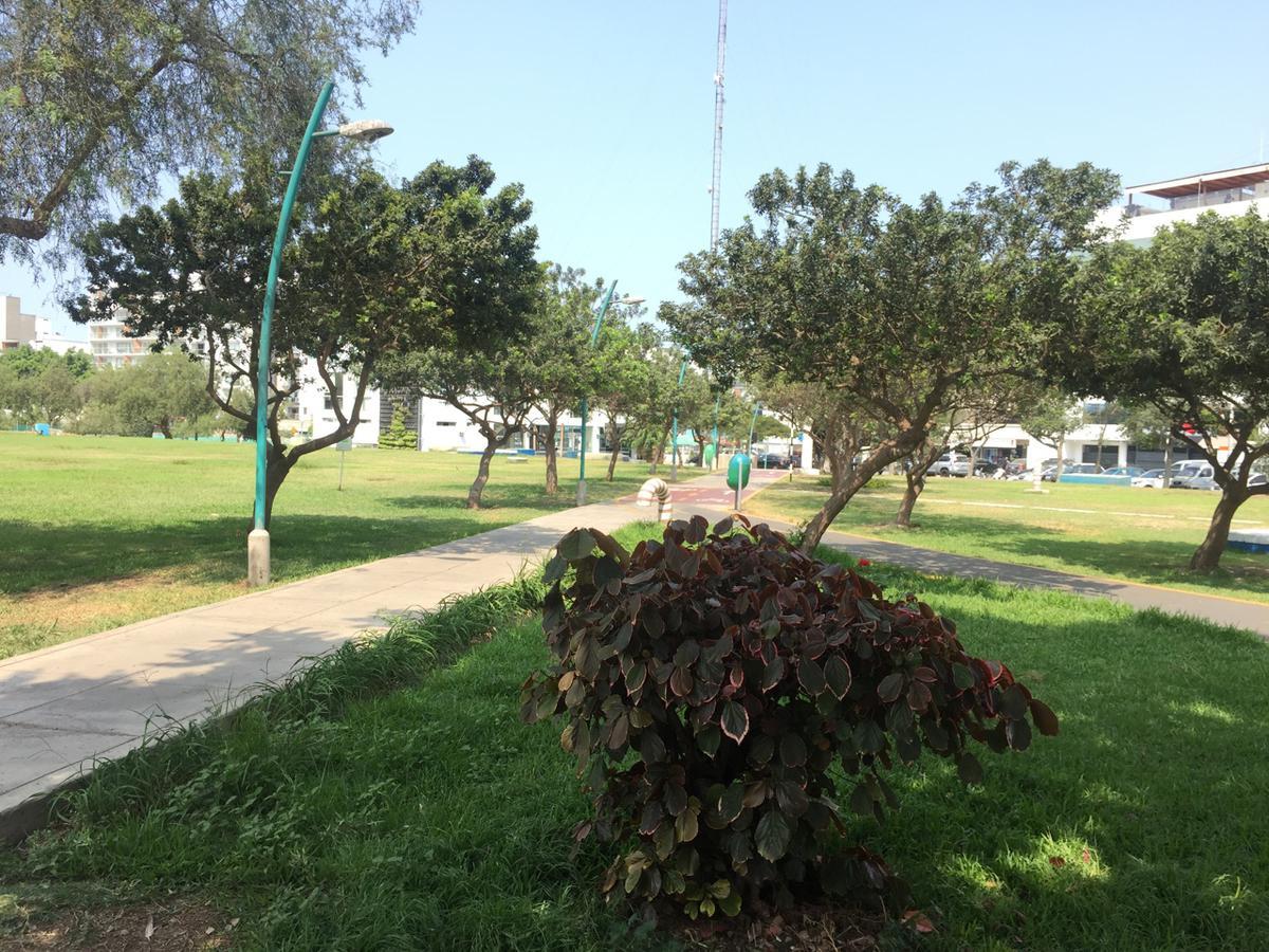 Foto Departamento en Alquiler en  San Borja,  Lima  Avenida San Borja Sur cdra 1