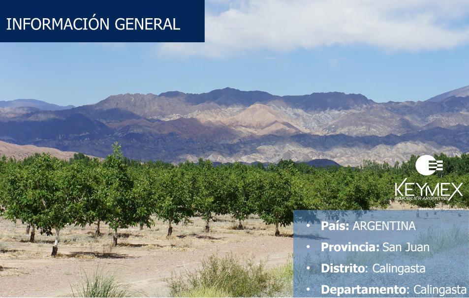 Foto Campo en Venta en  Calingasta ,  San Juan  Calingasta - San Juan