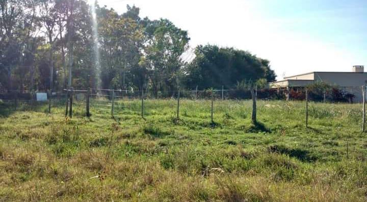 Foto Terreno en Venta en  Gualeguay,  Gualeguay  Zona Paso de Alonso