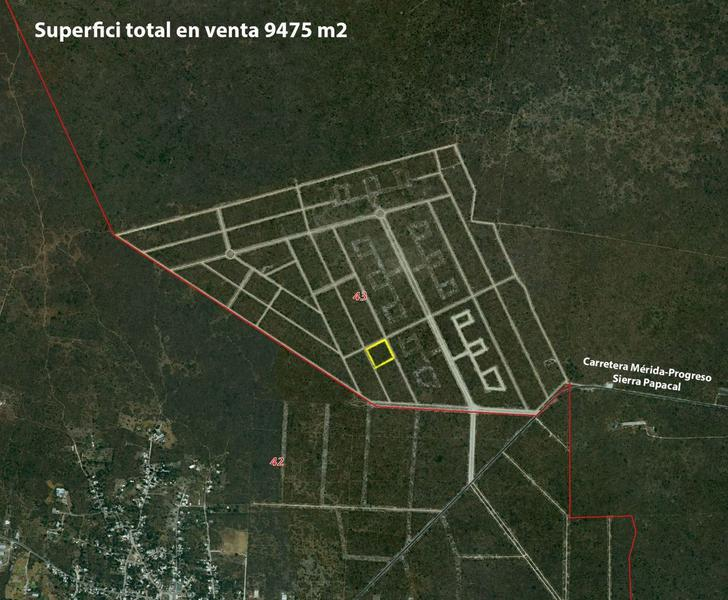 Foto Terreno en Venta en  Pueblo Sierra Papacal,  Mérida  Terrenos Desde 948 m2 hasta 9,475 m2 Zona Sierra Papacal
