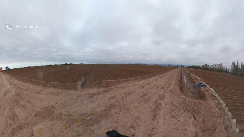 Foto Finca en Venta en  Lavalle ,  Mendoza  Ruta 40