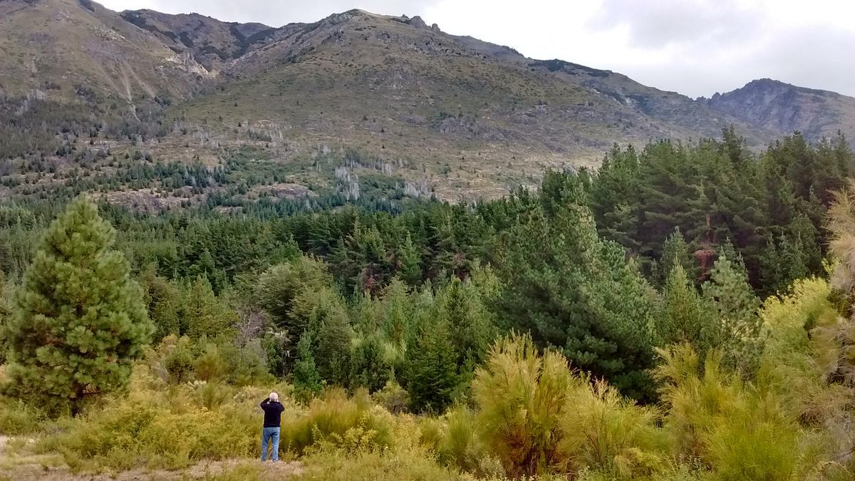 Foto Chacra en Venta en  Rinconada,  Epuyen  RR3692