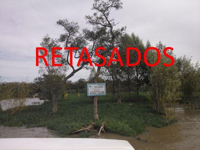 Foto Terreno en Venta en  Urion,  Zona Delta Tigre  Urion Parcelas 51 y 52
