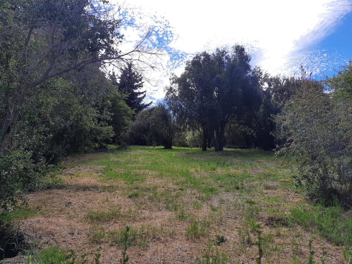 Foto Terreno en Venta en  Jardín Botánico,  San Carlos De Bariloche  Bo. Jardin Botánico