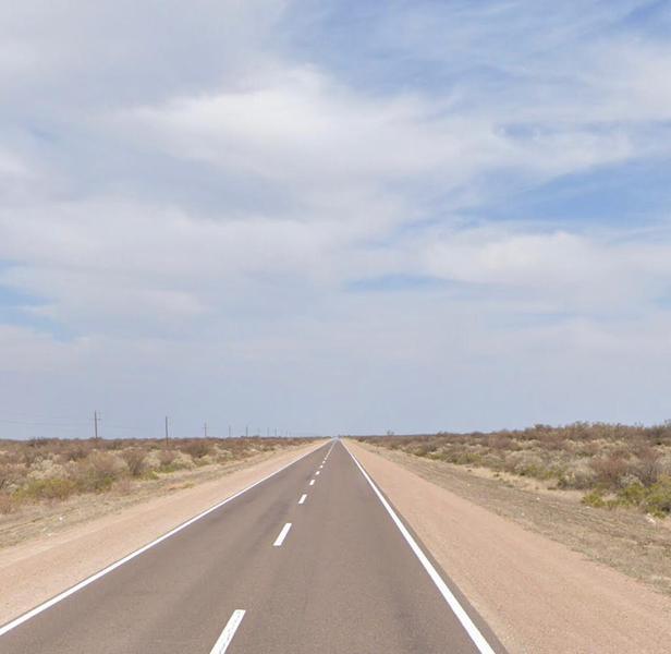 Foto Campo en Venta en  General Alvear ,  Mendoza  Ruta 143