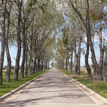 Foto Terreno en Venta en  La Alameda,  Canning  Cáceres y Ruta 58 Km 9,5