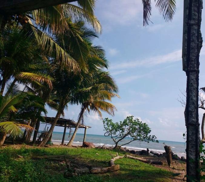 Foto Terreno en Venta en  Alvarado Centro,  Alvarado  Venta Terreno en Veracruz (frente al mar en Antón Lizardo)
