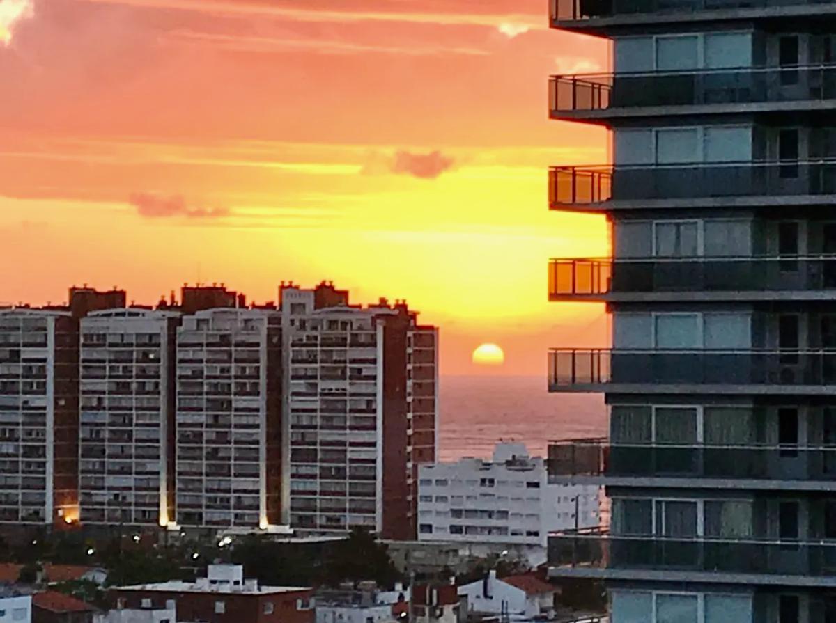 Foto Apartamento en Venta en  Playa Brava,  Punta del Este  Forest Tower