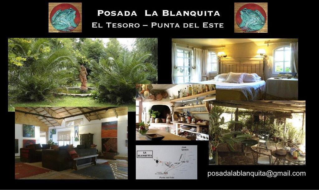 Foto Casa en Alquiler en  Punta del Este ,  Maldonado  El tesoro - Punta del Este - Uruguay