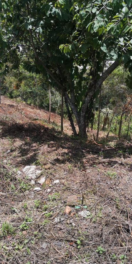 Foto Terreno en Venta en  Fraccionamiento Barranca Honda,  Xalapa  Fraccionamiento Barranca Honda