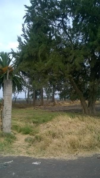Foto Terreno en Venta en  Unidad habitacional Valle Dorado Infonavit,  Zamora  Terreno al Poniente de la Ciudad