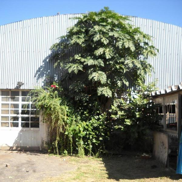 Foto Galpón en Venta en  Pablo Nogues,  Malvinas Argentinas  Mariotte 557
