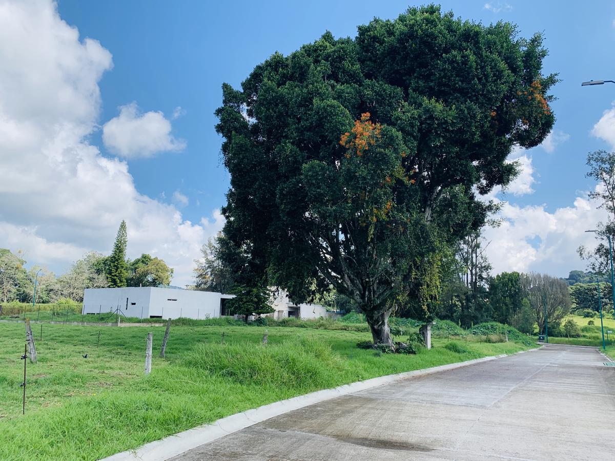 Foto Terreno en Venta en  Fraccionamiento Coapexpan,  Xalapa  Terreno en venta en Xalapa Zona Coapexpan, Fracc. Manantial Lote 22