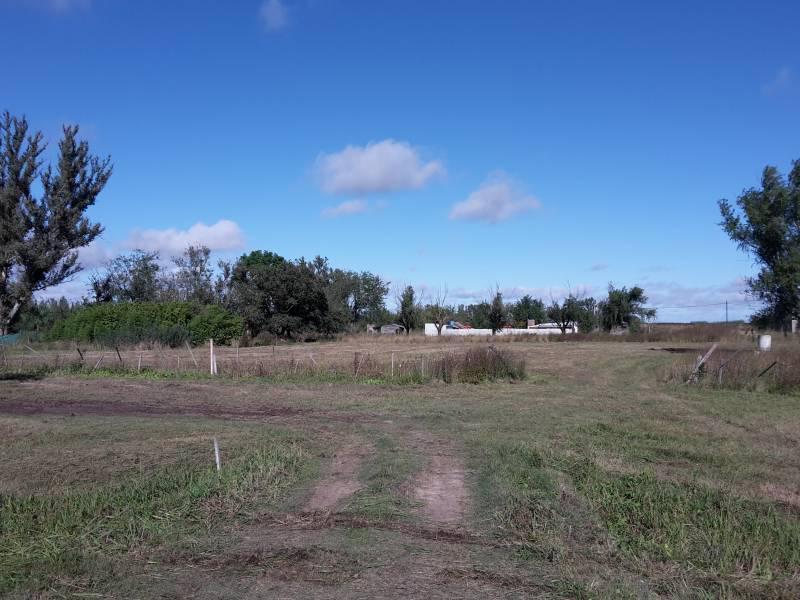 Foto Terreno en Venta en  Luis Palacios,  San Lorenzo  Luis Palacios - Ruta 34 -(L3) Km 22