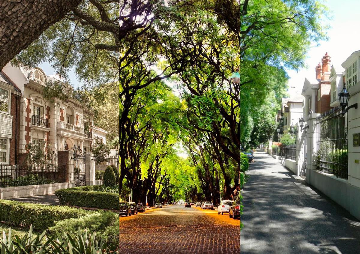 Foto PH en Venta en  Belgrano R,  Belgrano  SUPERI al 1700