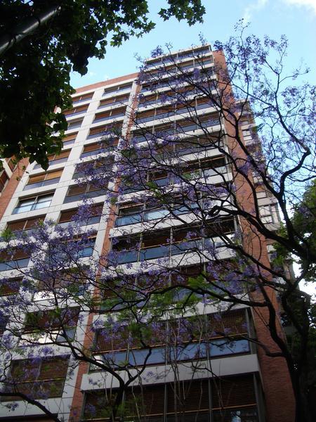 Foto Departamento en Venta en  Belgrano Barrancas,  Belgrano  Virrey del pino al 2000