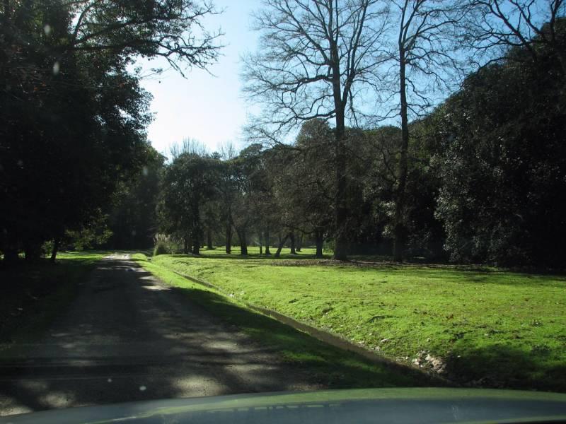 Foto Chacra en Venta en  Estancia Benquerencia,  San Miguel Del Monte  La Benquerencia, San Miguel del Monte