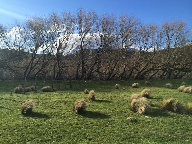 Foto Campo en Venta en  Trevelin,  Futaleufu  Río Futaleufu