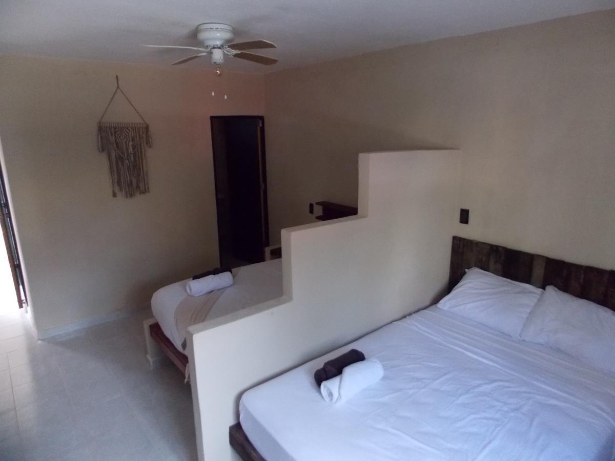 Foto Hotel en Venta   Renta en  Tulum Centro,  Tulum  Hotel de 10 Habitaciones en Tulum centro