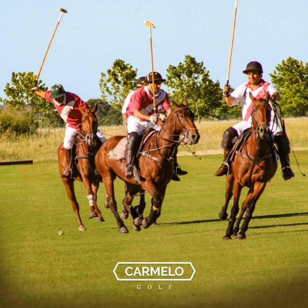 Foto Terreno en Venta en  El golf,  Carmelo  Carmelo Golf al 100 SECTOR POLO