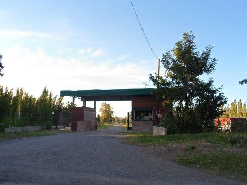 Foto Terreno en Venta en  Capital ,  Neuquen  Chivilcoy al 800