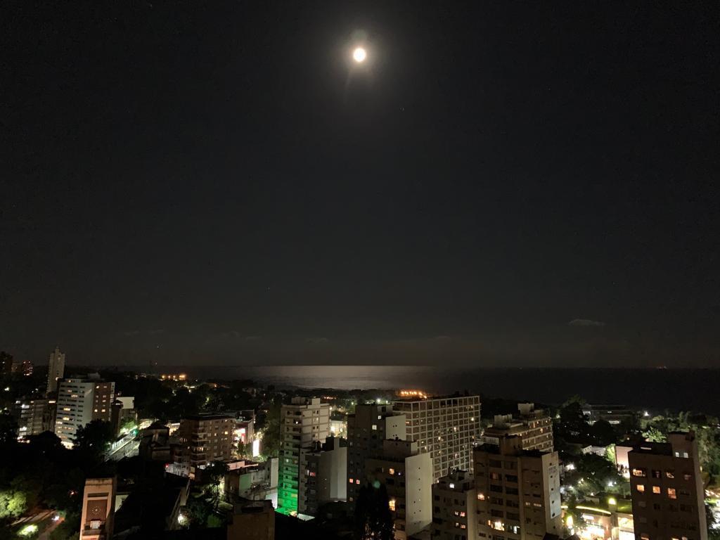 Foto Departamento en Venta | Alquiler en  Olivos-Vias/Maipu,  Olivos  Rosales al 2700