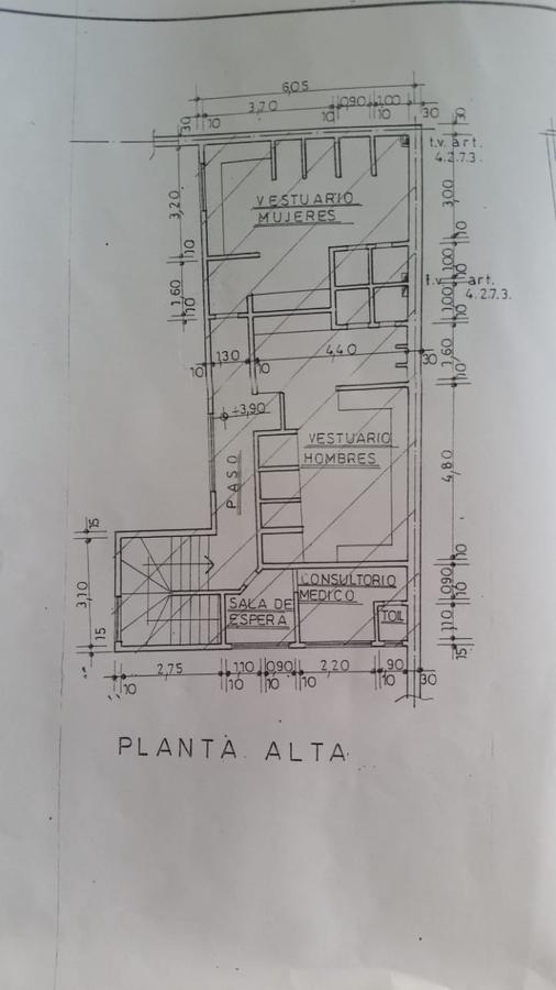 Local - San Isidro-20
