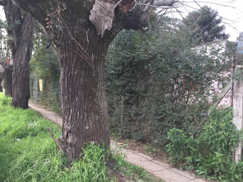 Foto Terreno en Venta en  San Miguel,  San Miguel  GRANADEROS A CABALLO al 2800