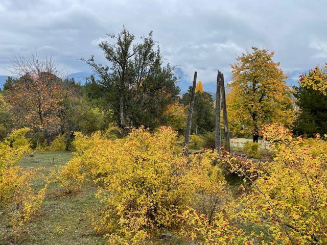 Foto Chacra en Venta en  Las Golondrinas,  Lago Puelo  Las Golondrinas