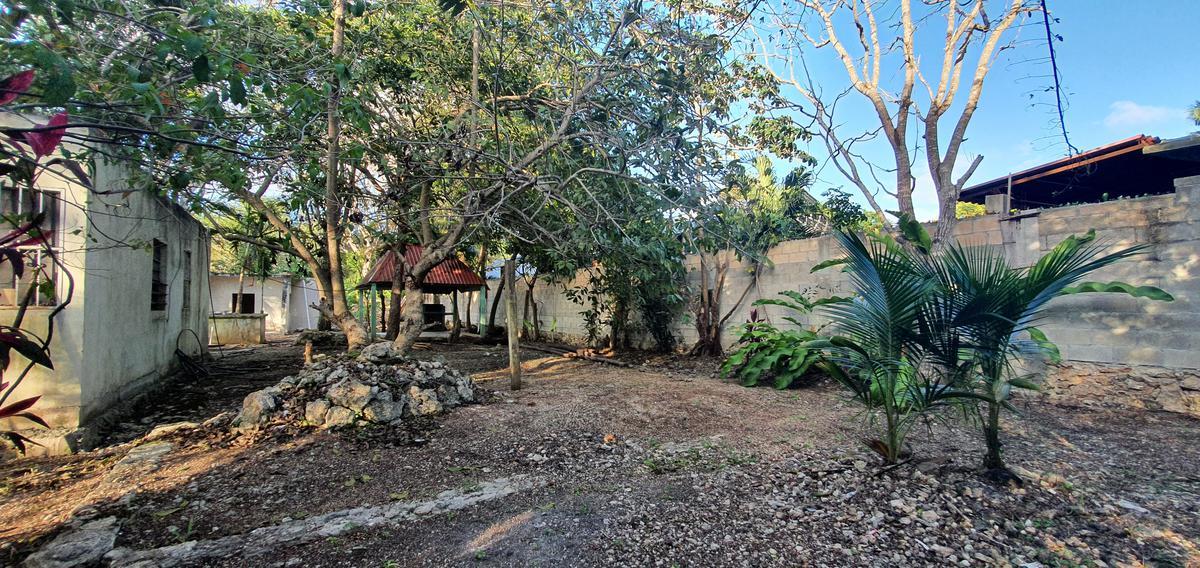 Foto Terreno en Venta en  Bacalar ,  Quintana Roo  AMPLIO TERRENO ARBOLADO EN BACALAR CON CASA EN OBRA NEGRA
