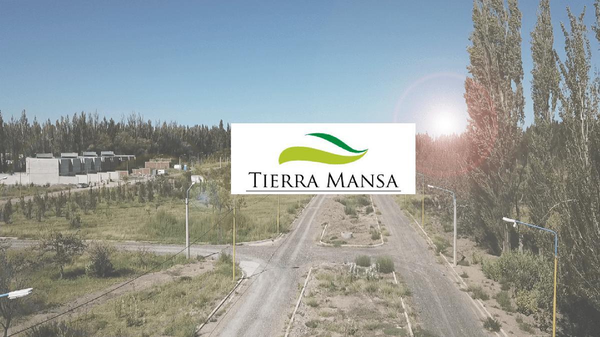 Foto Terreno en Venta en  Centenario,  Confluencia  Tierra Mansa