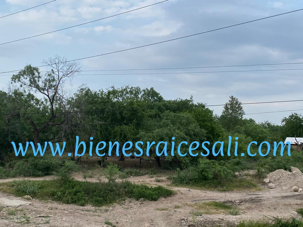 Foto Terreno en Venta en  Piedras Negras ,  Coahuila  Padre de las Casas, Col. la Zacatoza