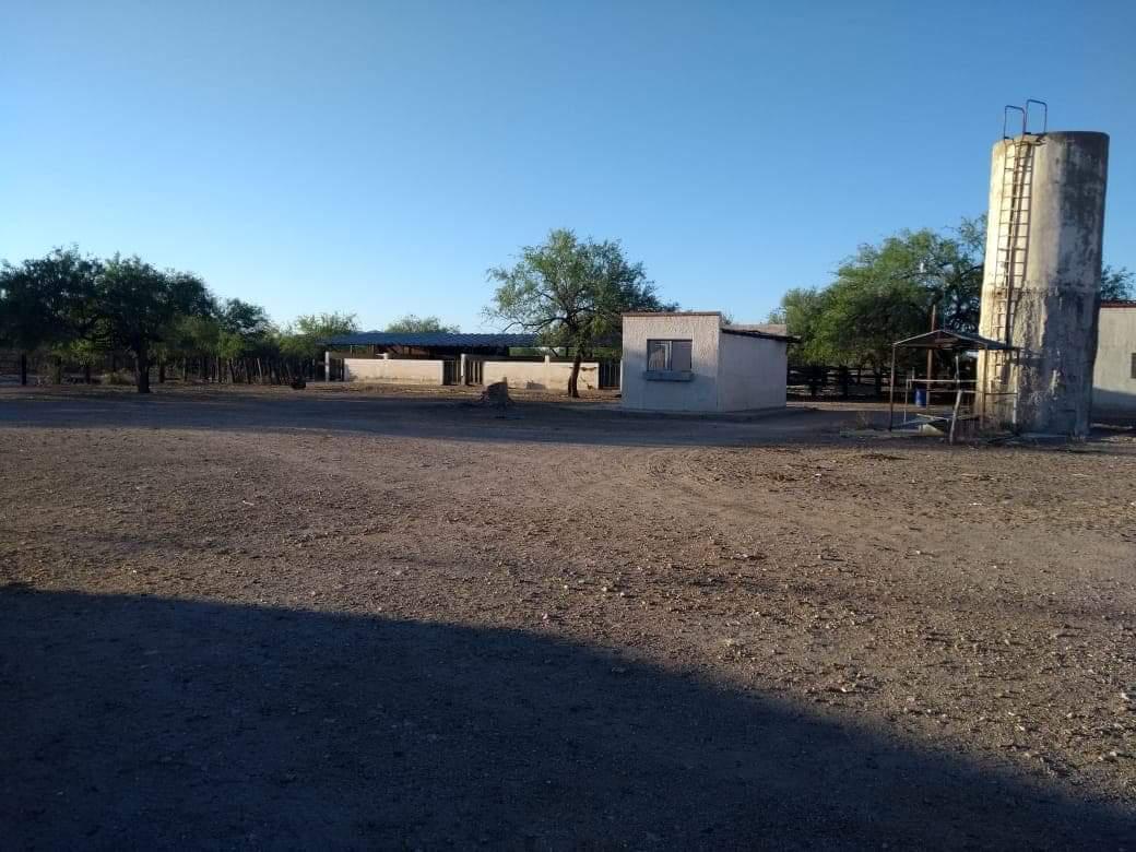 Foto Campo en Venta en  Hermosillo ,  Sonora  VENTA DE CAMPO AGROPECUARIO CASA BLANCA EN EL KM 10 CARRETERA SANTA ANA-CABORCA