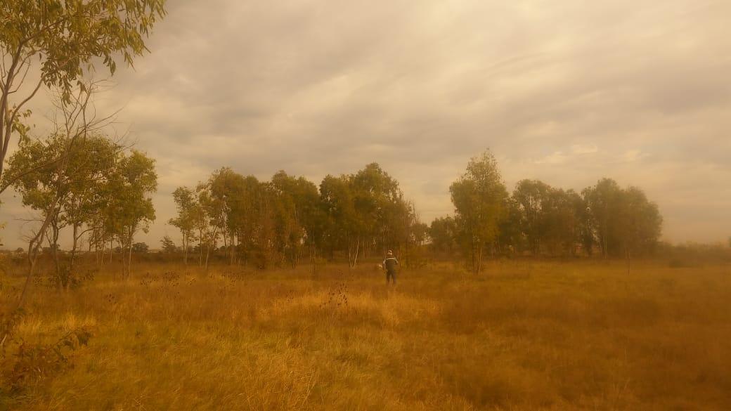 Foto Terreno en Venta en  Funes ,  Santa Fe  Progresión  de RP 34 - S