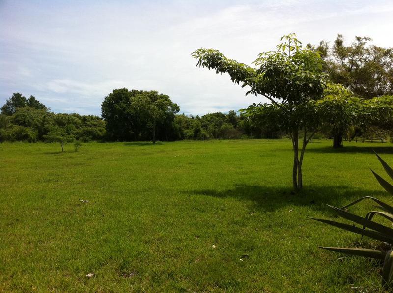 Foto Terreno en Venta en   Colinas de Carrasco,  Countries/B.Cerrado (Carrasco)  Barrio privado terreno, orden de vender