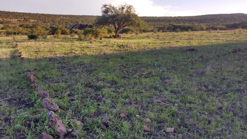 Foto Terreno en Venta en  Rancho o rancheria San Vicente Ferrer,  El Marqués  SAN VICENTE FERRER