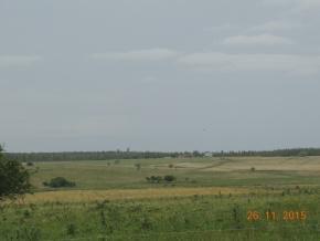 Foto Campo en Venta en  Jose Enrique Rodo ,  Soriano  Excelente ubicación, 127 hás con aptitud 70 % agrícola, en Soriano, ruta 55