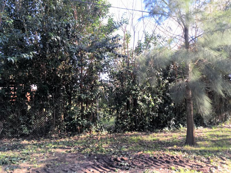 Foto Terreno en Venta en  Barrio Parque Leloir,  Ituzaingo  Del Pericon